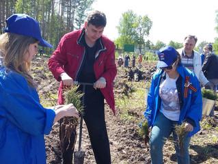 Экологическая акция «Лес Победы».