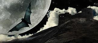 Full Moon Bat