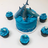 Sharks Cake & Cupcakes