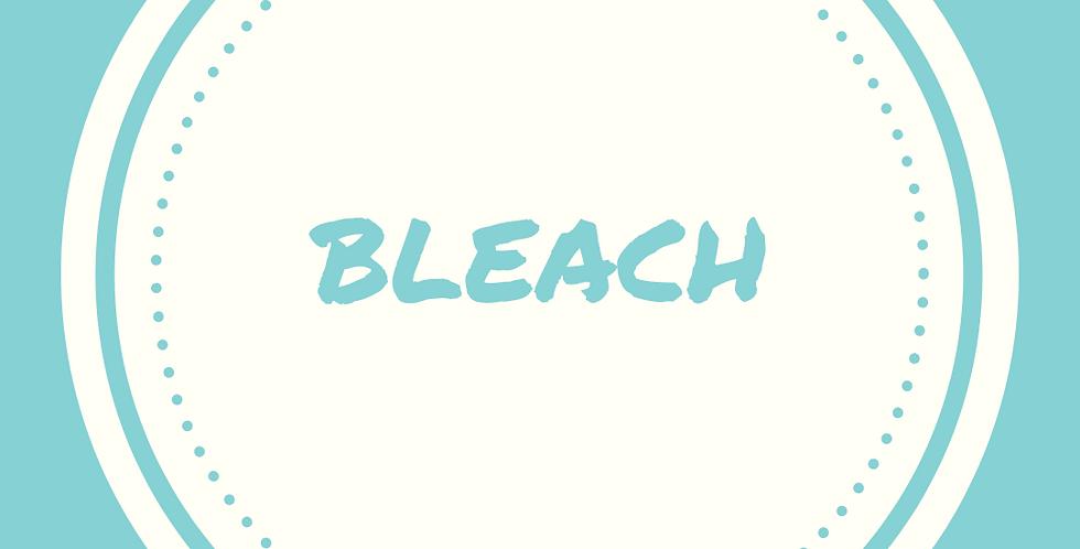 Bleach   1 Gallon