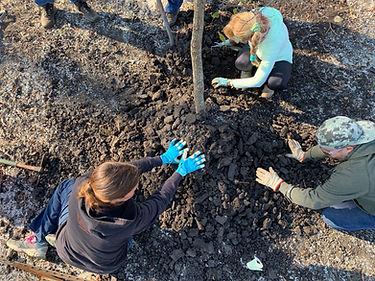 EGC_20191207_Phase_2_Tree_Planting_07.jp