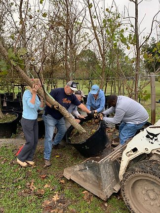 EGC_20191207_Phase_2_Tree_Planting_01A.j