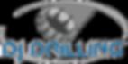 DJ_Drilling-Logo_WhiteBG_Small.png