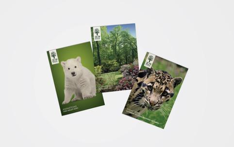 Carte postales