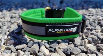 Alphadogsport collier Amarok CONFORT