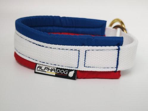 Alphadog Collier Amarok rembourré Team France