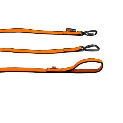 Non-stop Dogwear bungee leash double