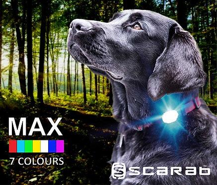 Scarab MAX