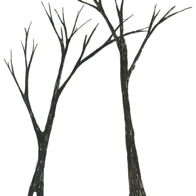 Tree_SA333_SabrinaAsquithArt_3.15.01.jpg
