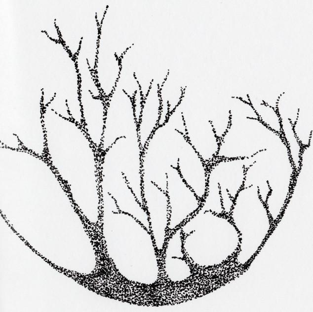 Tree_SA034_SabrinaAsquithArt_2015.jpg