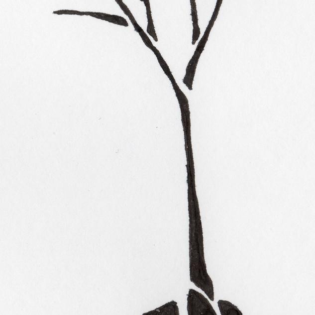 Tree_SA055_SabrinaAsquithArt_2001.jpg