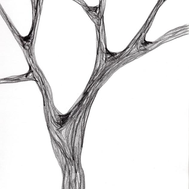 Tree_SA010_SabrinaAsquithArt_2015.jpg