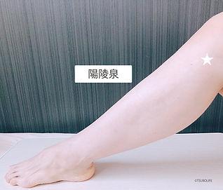 陽陵泉.jpg
