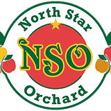 north_star_logo.png