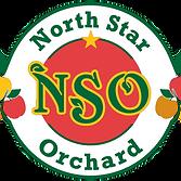 north_star_logo.png
