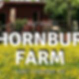Thornbury Farm CSA_edited.png