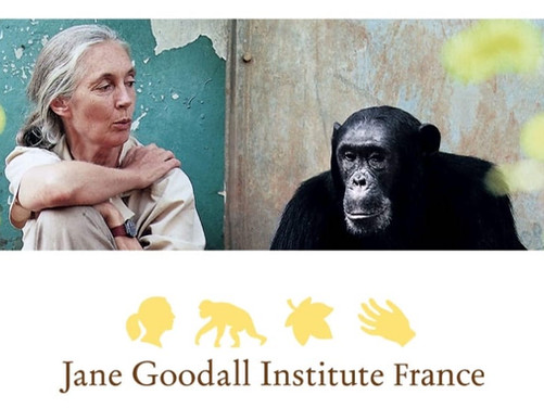 Bernard et Arnaud BESSOUD à l'Institut Jane Goodal France