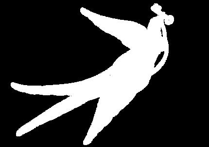 鳥.png