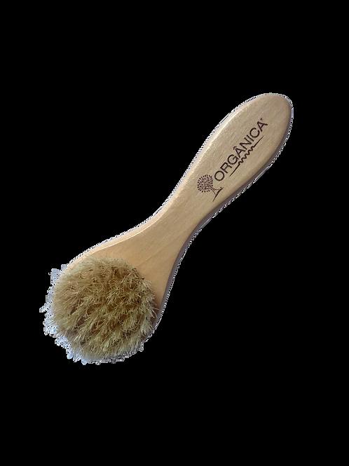 Escova Facial com Cerdas Naturais – Orgânica