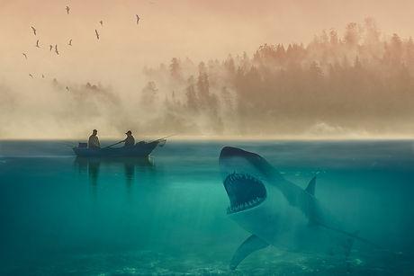 white-shark-4454518_1920.jpg