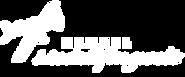 logo-modellflugwelt-weiss.png