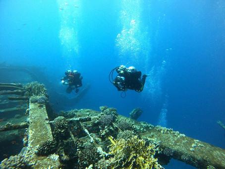 我愛「人工珊瑚礁」!
