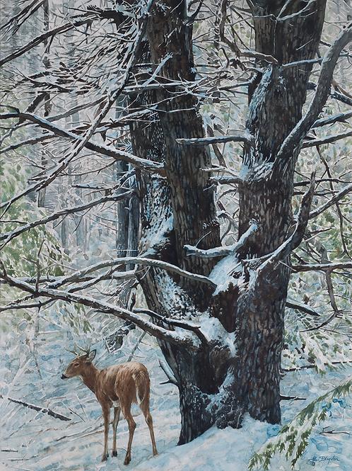 Allen Blagden-Boutiqueart-First Snow - Second Winter Interior Design Prints