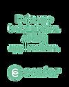 ecster_banner_transparent.png