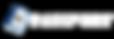 GSVlogov3 transparent copy.png