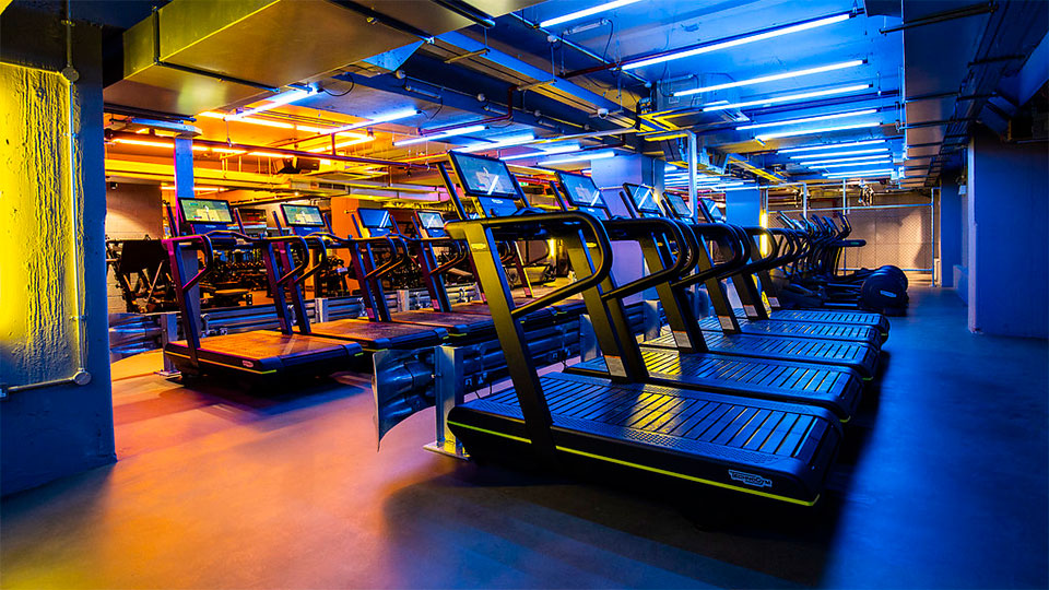 Gymbox Cannon Green | Lightivity Lighting Design
