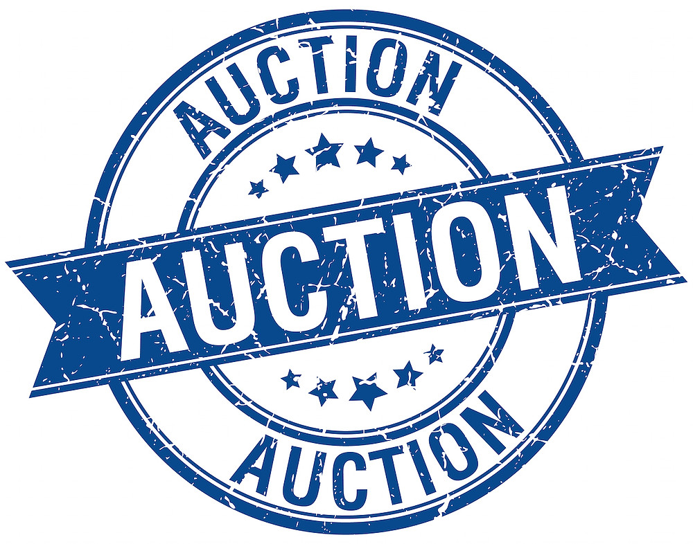 Sports Connections Foundation's silent Auction