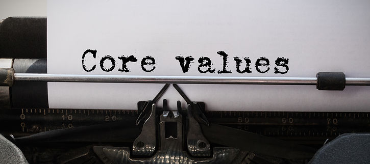 Phoenixfire Strategic Consulting, Core values, values, consultant, consulting, NYC, rescue, animal welfare, non profit