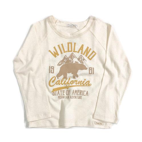 Camiseta de Urso