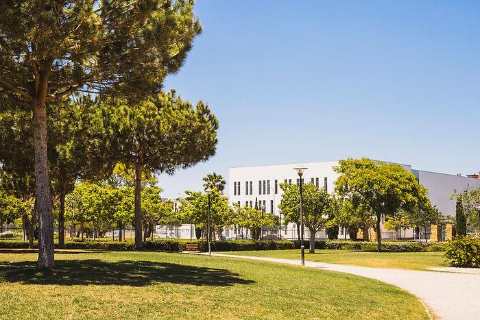 college admissions advisor campus north