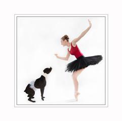 ballet dog photography maryland.jpg