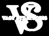 Vast Strategies Logo All White.png