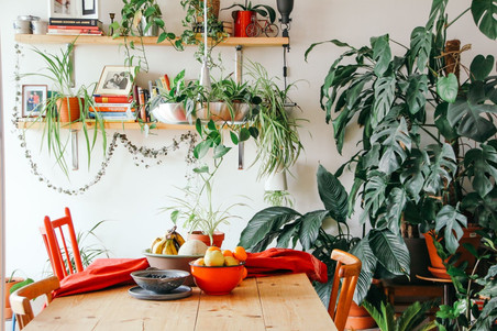 How To Incorporate More Greenery Into Your Home