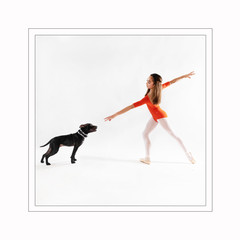 ballet dog photography new york.jpg