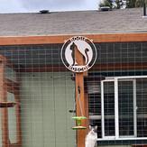 custom pvc weatherproof cat sign.jpg
