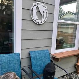 custom pvs weatherproof cat sign outdoor