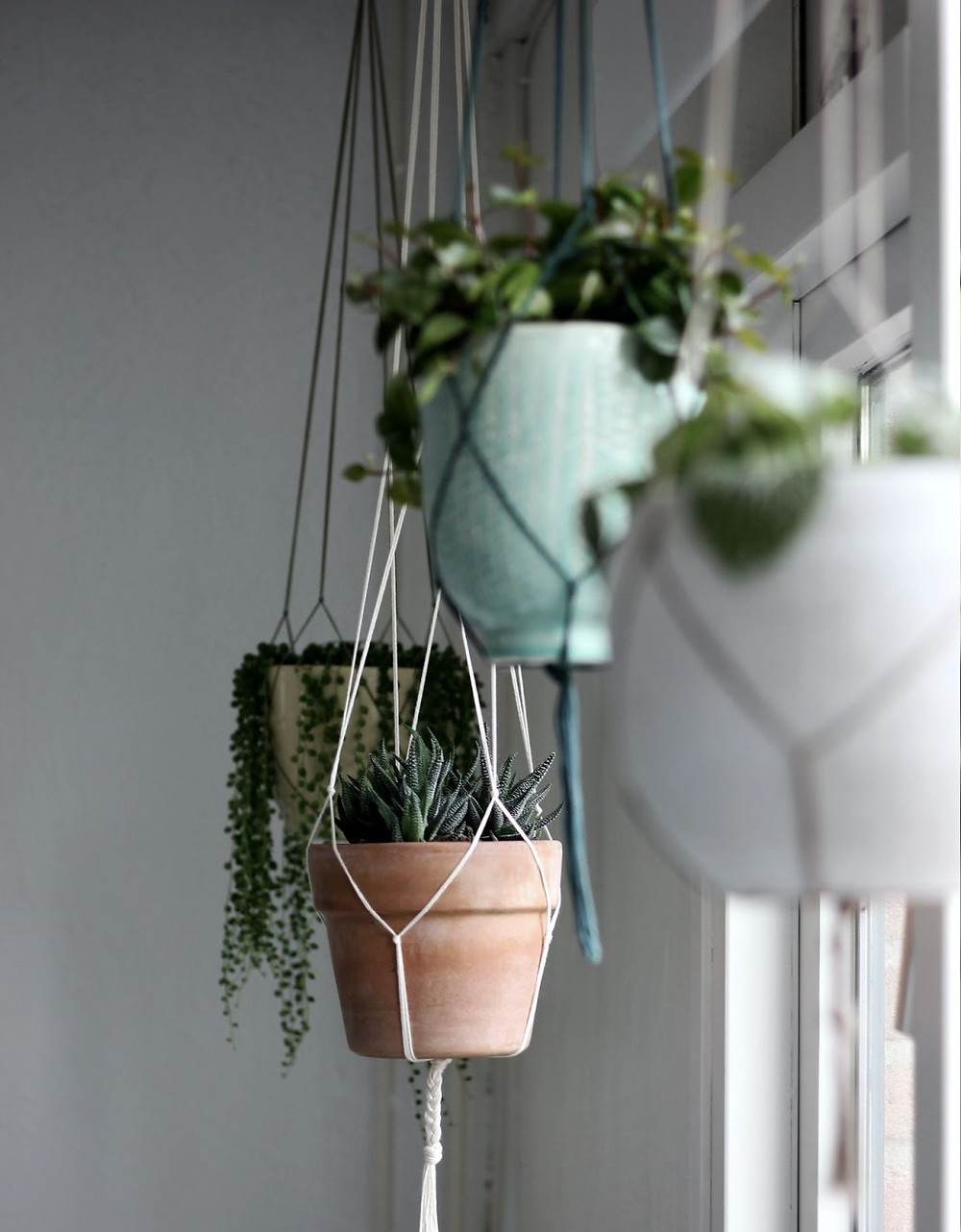 Using Planters and Greenery in Your Home in the Window
