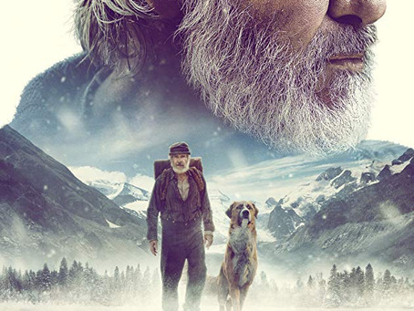 The Call of the Wild - charming film for the whole family