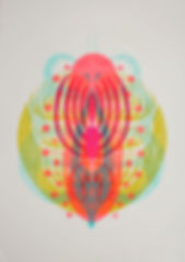 cellule felur fluo Muriel Kerba Galerie Paul Ripoche Lyon
