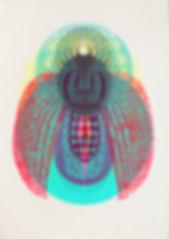 scarabee bleu et chardon Muriel Kerba Galerie Paul Ripoche Lyon