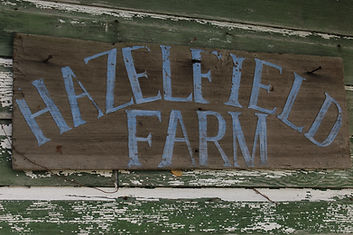 Hazelfield FarmSign