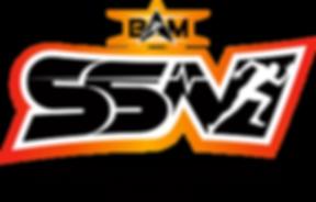 SSN_logo_Final (1).png
