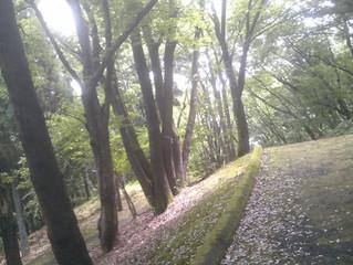 豊ヶ丘北公園