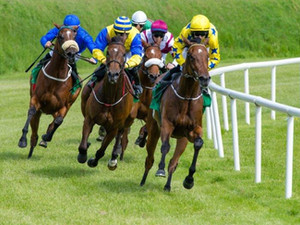 We're Off To The Races: Restatement Period Opens for Pre-Approved Defined Contribution Plans