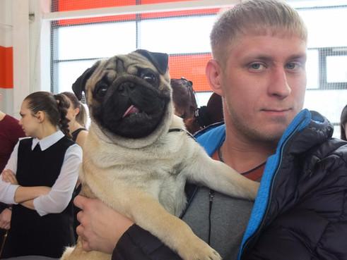 Выставка собак всех пород  Выставка собак ЧРКФ