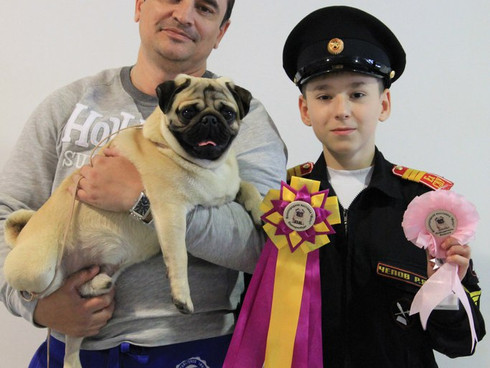 Региональная выставка собак всех пород. Моно мопс ранг ПК